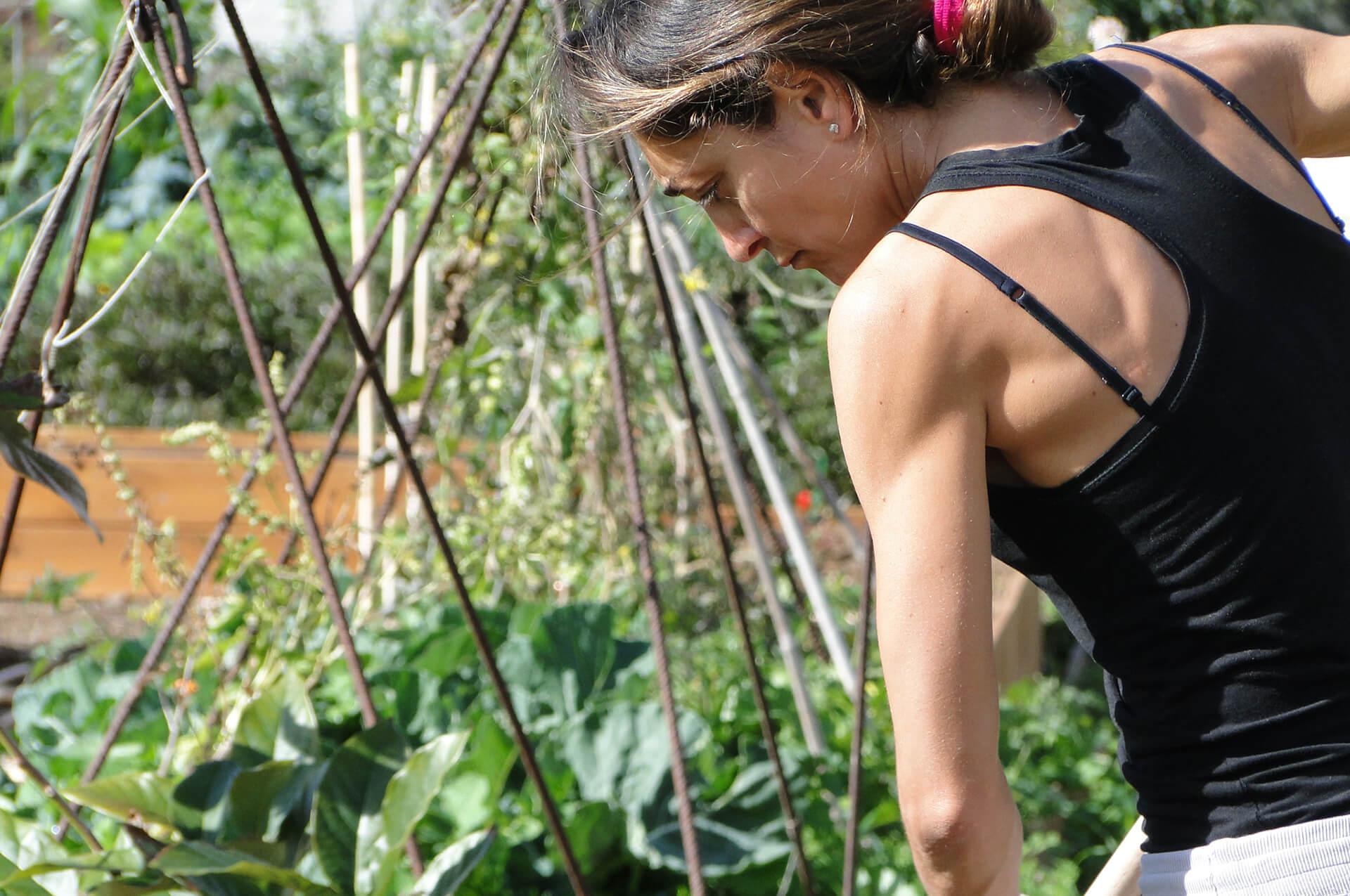 mela-garden